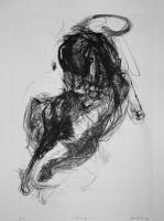 2015 | Lithografie | 42 x 30 cm