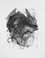2015 | Lithografie | 30 x 25 cm